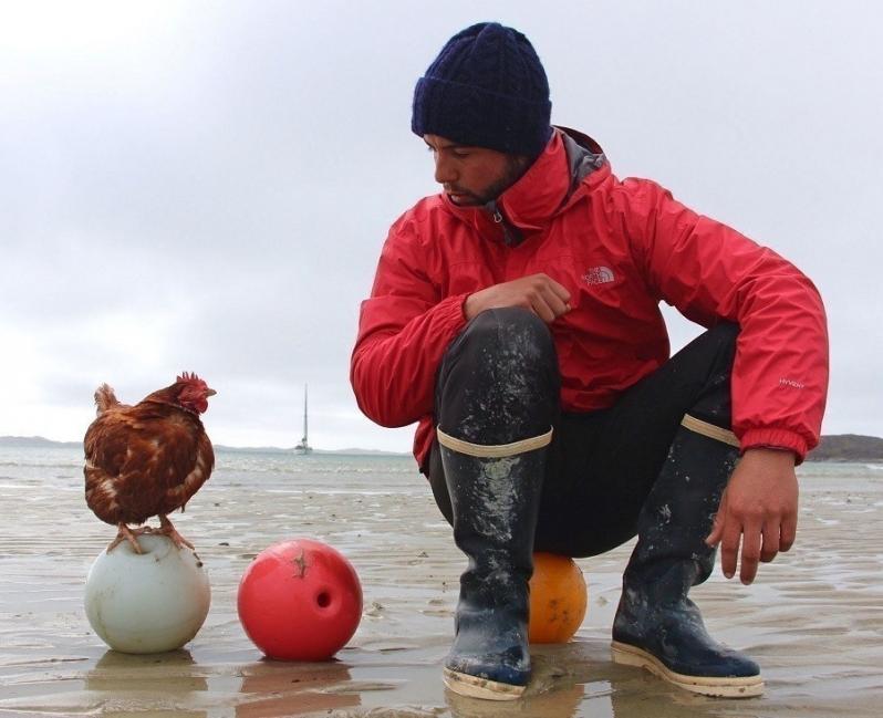 Guirec Soudee- viajar con una gallina