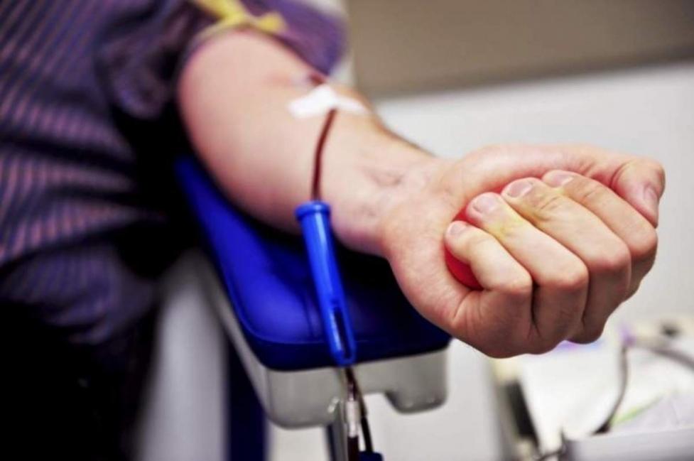 donar sangre- medula osea