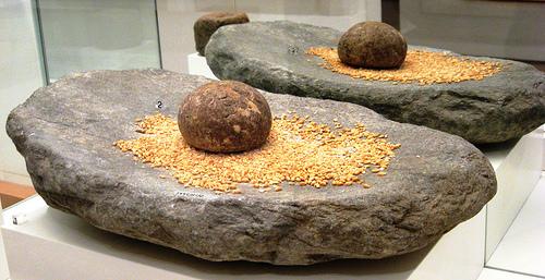 creación del trigo