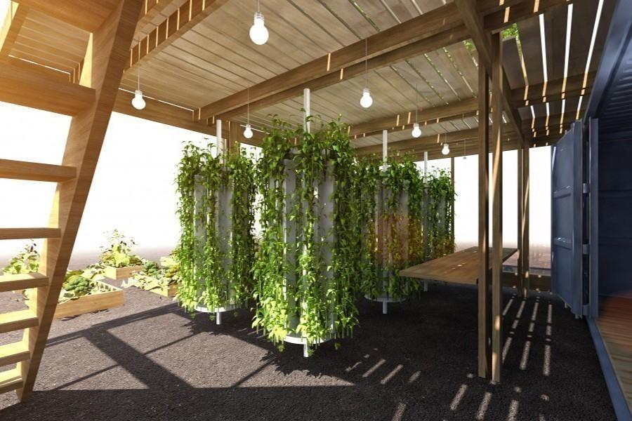 granja urbana que puede producir hasta 6 toneladas de alimento -  granja de impacto