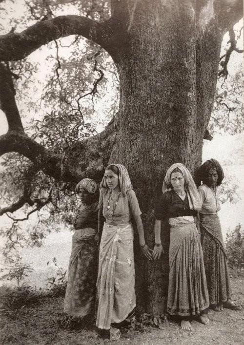Mujeres chipko