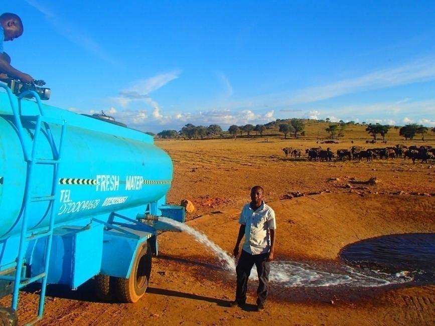 hombre lleva agua a animales en el desierto