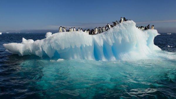antartida-clima