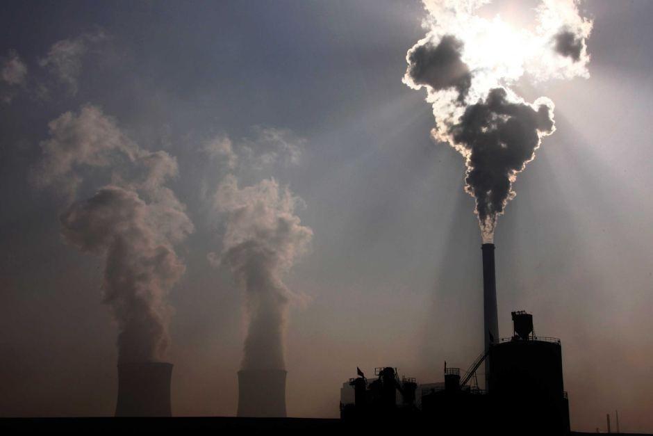 carbon como fuente de energia