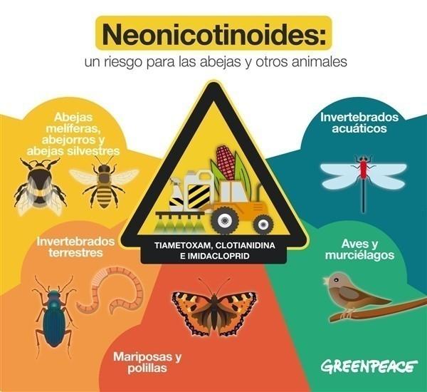 Riesgo del uso de neonicotinoides