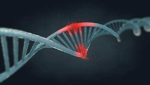 Las celulas cancerigenas liberan su ADN en la sangre