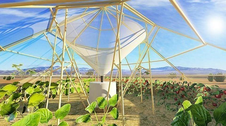 invernadero que hace crecer plantas en el desierto- estructura