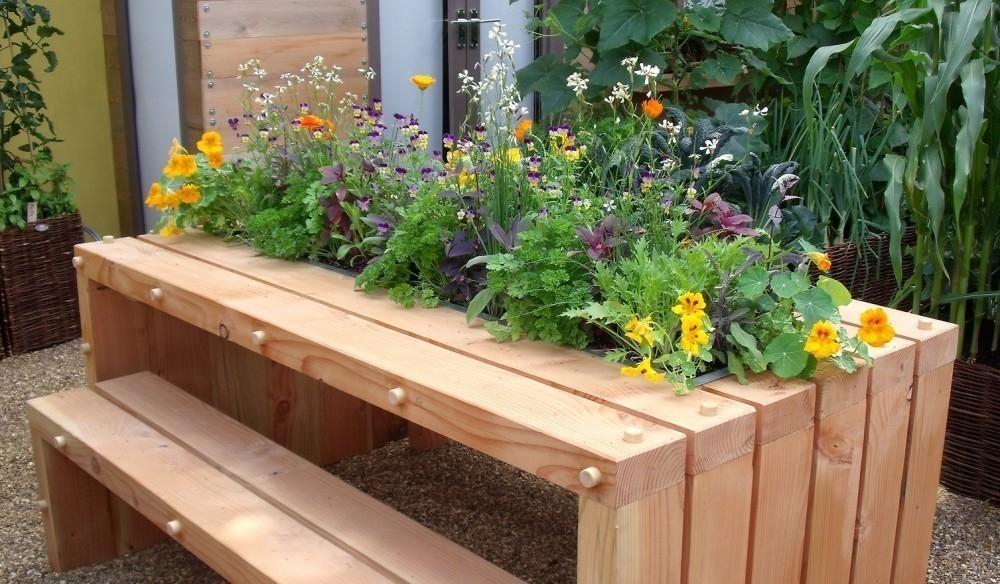 jardín comestible paso a paso