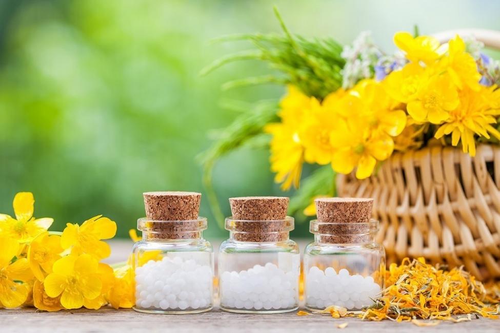 Antiinflamatorios naturales - árnica
