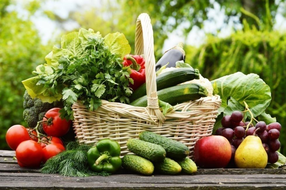 diferencia entre vegetariano o vegano - vegetarianismo
