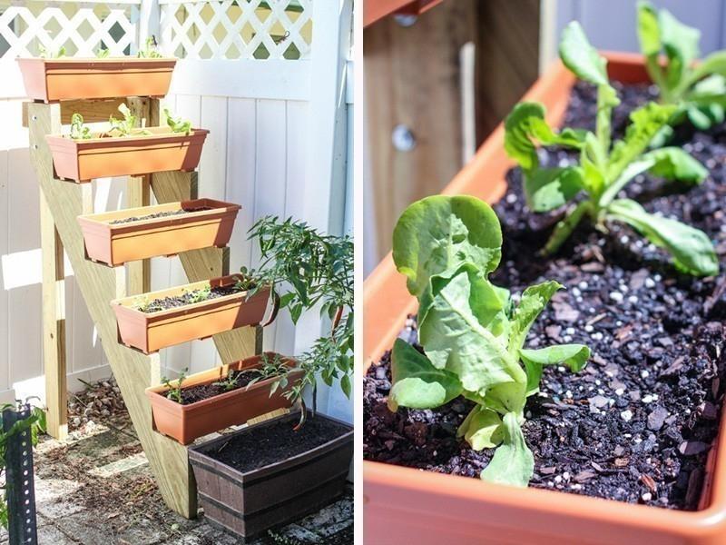 cómo hacer un jardín vertical escalonado - diy