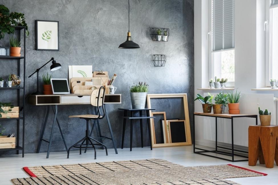 Usar plantas interiores según el Feng Shui