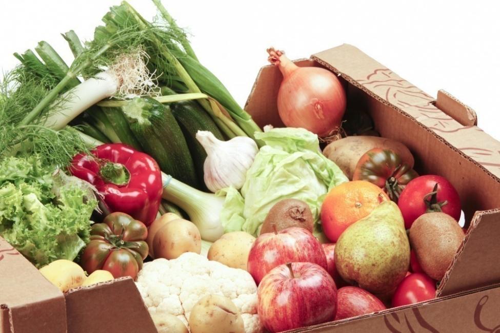 alimentos ecologicos- pesticidas