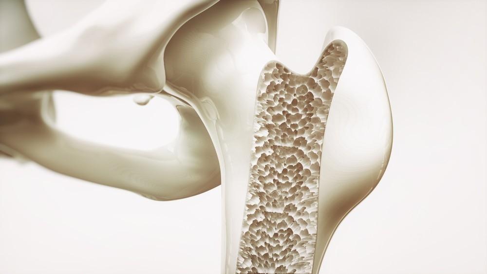 El calcio ayuda a conservar los huesos