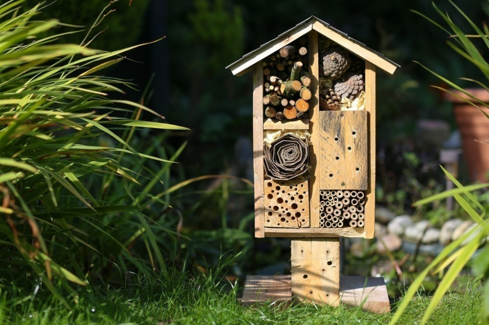 hotel para abejas- diseño