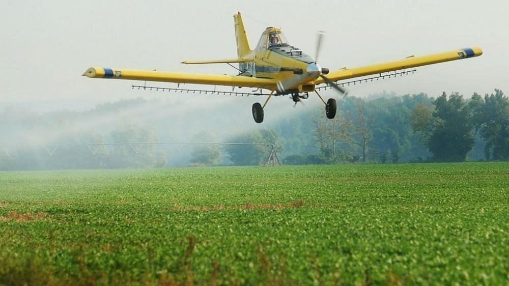 Monsanto no podrá patentar sus semillas - glifosato y agroquímicos