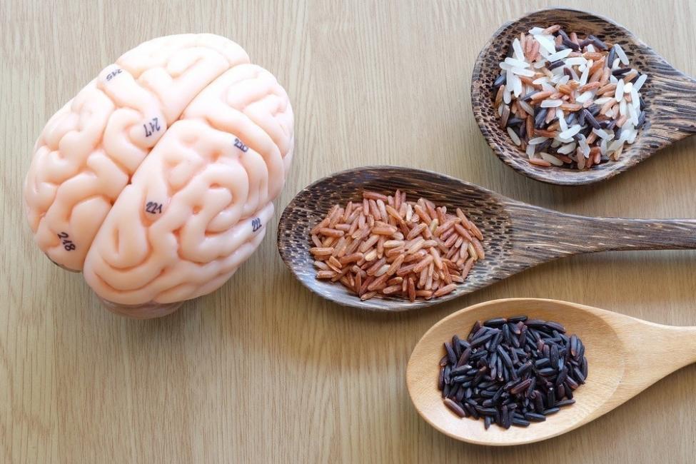 dietas para el cerebro