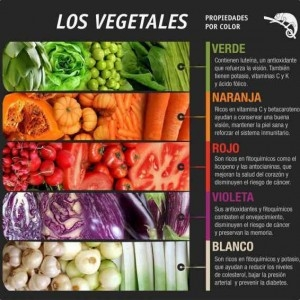 Vegetales-color