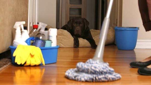 Limpiar-la-casa-de-forma-rapida-y-eficaz