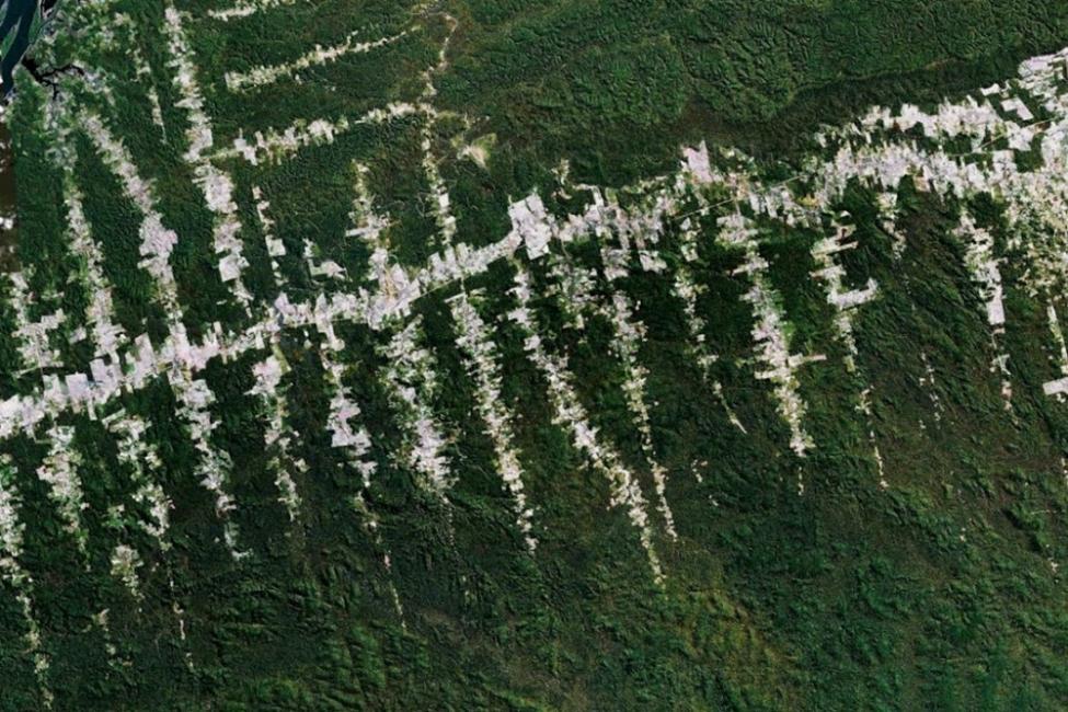 vista aerea del amazonas