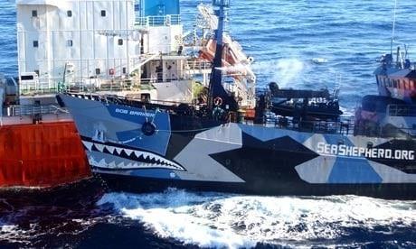 Sea Shepherd Conservation Society cuenta con varias embarcaciones