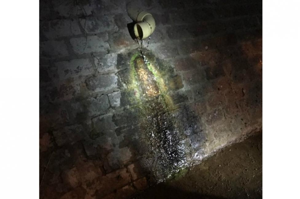 Posible aparición de la Vírgen de Guadalupe