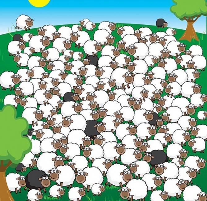 test oveja dormida