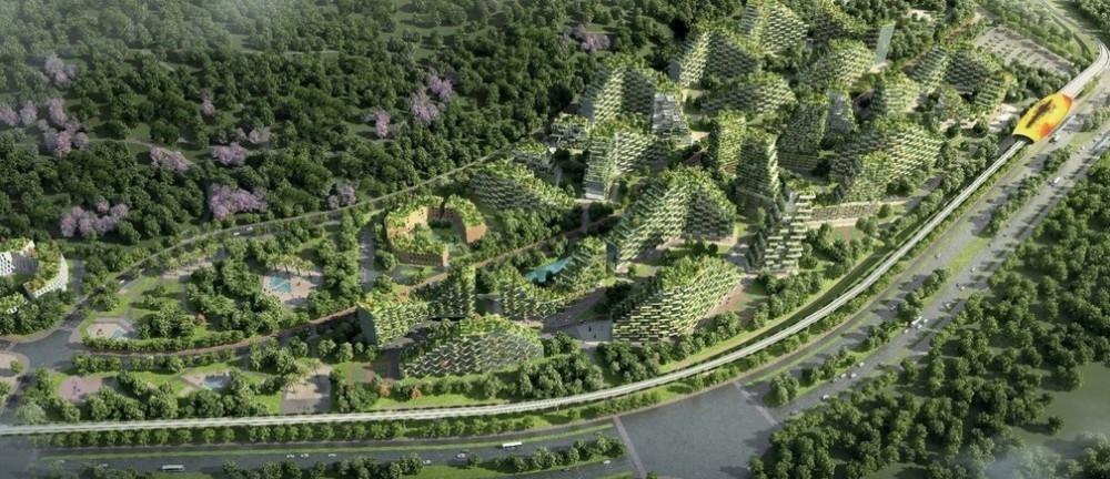 El proyecto de ciudad bosque en China fue iniciado en junio