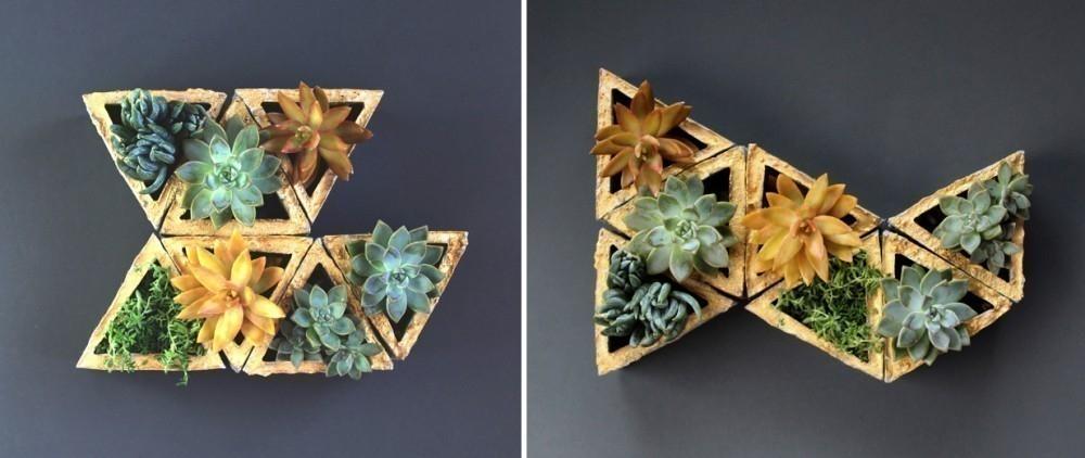 macetas modulares - con suculentas