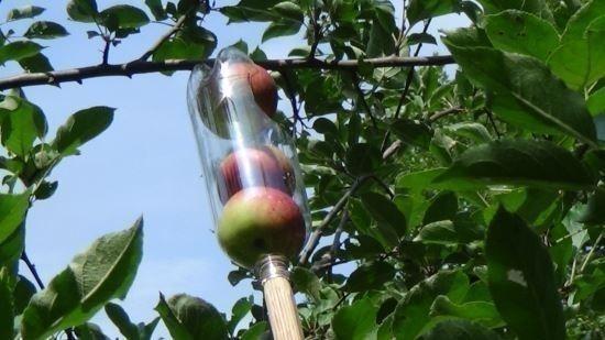 cómo hacer un recolector de frutas