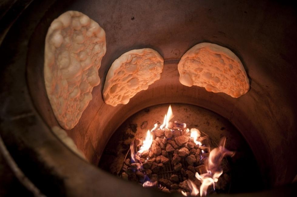 Horno tandoor para el jardín con macetas - fuego