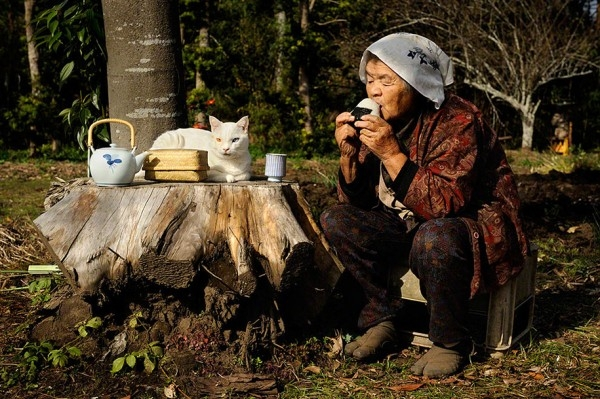 grandmother-and-cat-miyoko-ihara-fukumaru-6