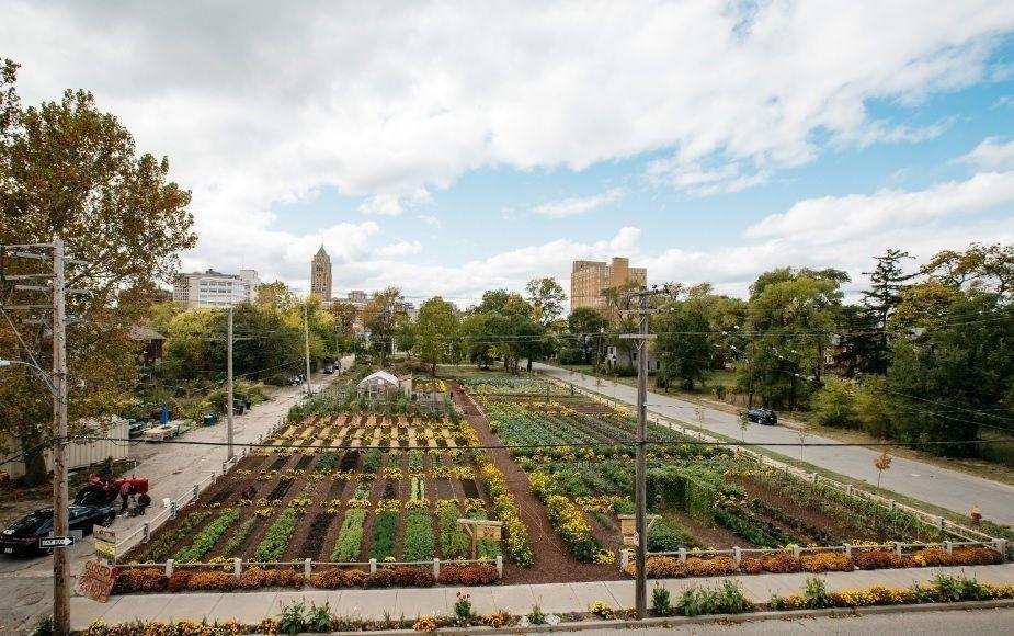 MUFI- agricultura urbana