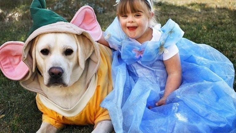 Sadie y Hero el perro enfermero