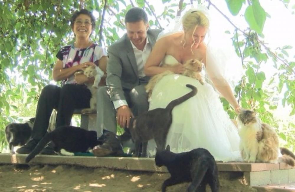 pareja viajó 4000 kilómetros para casarse en un lugar muy especial- historia