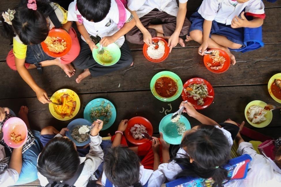 Ley prohibe tirar alimentos a la basura - comedor