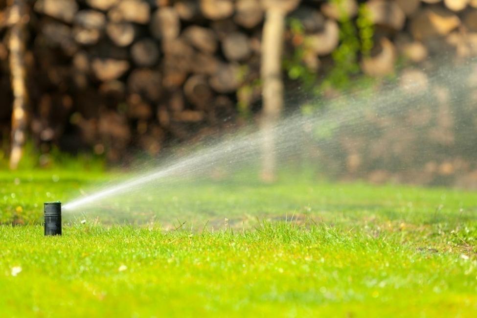Mantener húmedas tus plantas durante las vacaciones - riego automático