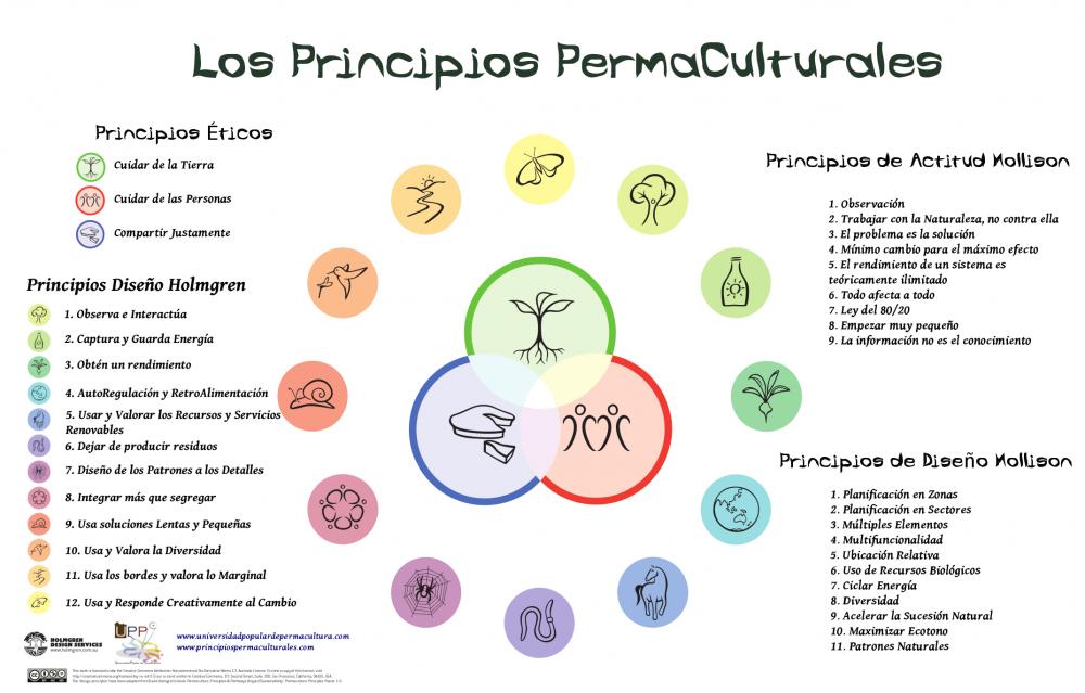 Permacultura - principios básicos