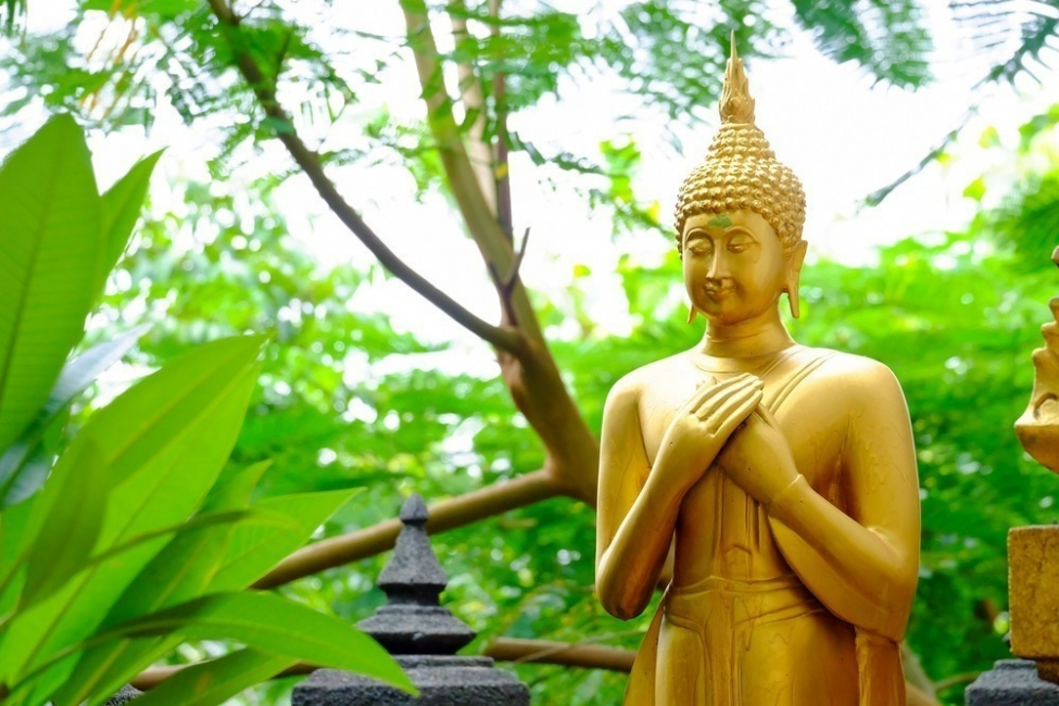 Buda en la naturaleza
