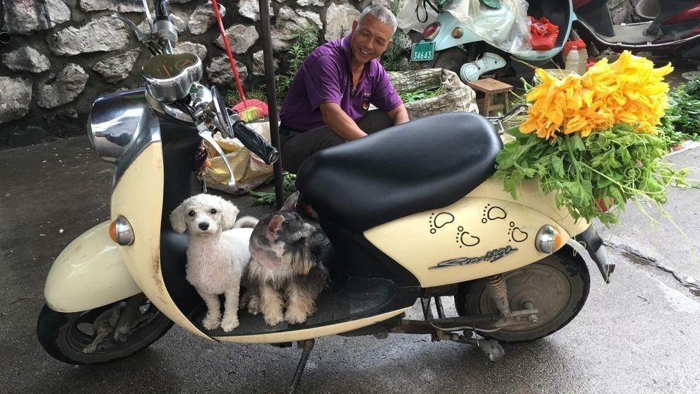 Hombre con perros en Yulin