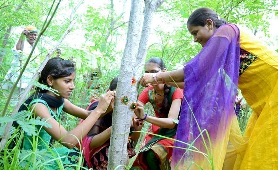 pueblo indio de Piplantri- mujeres y árboles- igualdad
