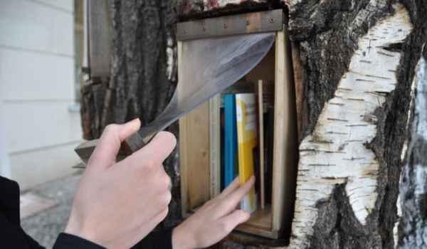 Book-tree4