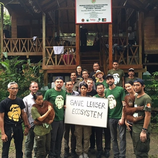 Leonardo DiCaprio orangutanes elefantes Sumatra- redes sociales