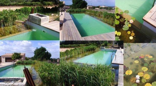 piscina-natural3