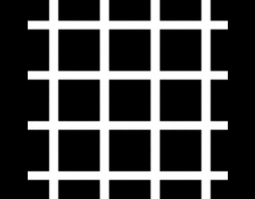 ilusiones ópticas que pondrán a prueba tu mente-10