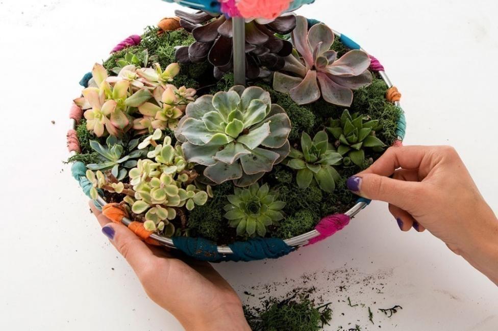 hacer un pequeño y colorido jardín para tener dentro de tu hogar- musgo