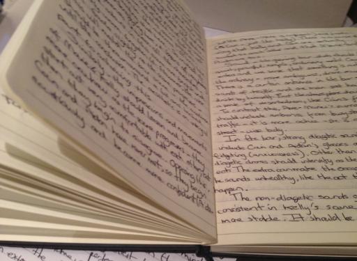 escribir diario