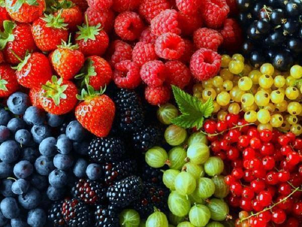 frutas y frutas