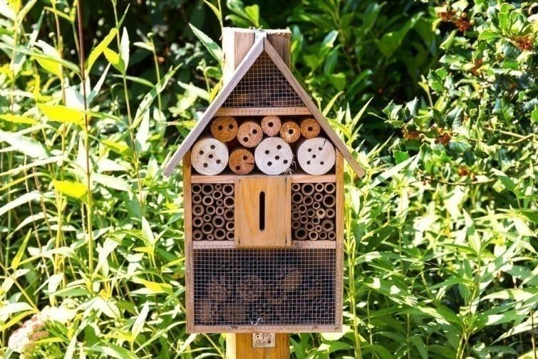 salvemos a las abejas- hoteles
