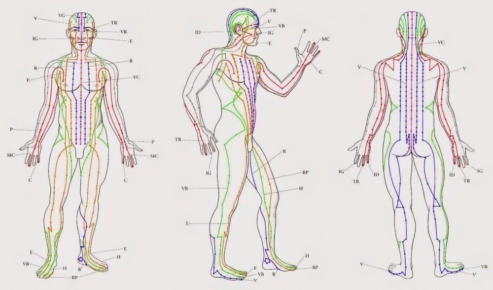 estirar meridianos del cuerpo